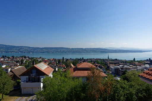 Wädenswil: Panoramic view at its finest